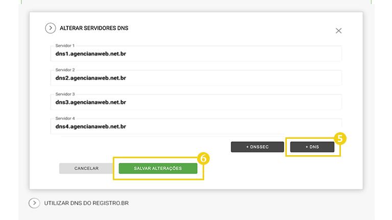 3_DNS_no_Registro.br.png